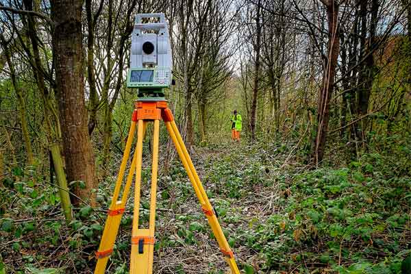 NTB-Survey-Surveyors-Working-In-Woodland
